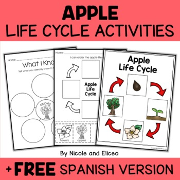 Vocabulary Activity - Apple Life Cycle