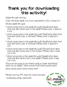 Apple Life Cycle Activity