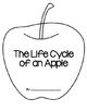 Apple Life Cycle Booklet