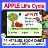 APPLE LIFE CYCLE Printables with BOOM CARDS DIGITAL TASK CARDS