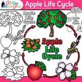 Apple Life Cycle Clip Art: Autumn Plant Graphics {Glitter Meets Glue}