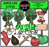 Apple Life Cycle Clip Art Set {Educlips Clipart}