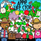 Apple Life Cycle Clip Art Set