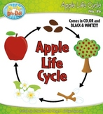 Apple Life Cycle Clipart {Zip-A-Dee-Doo-Dah Designs}