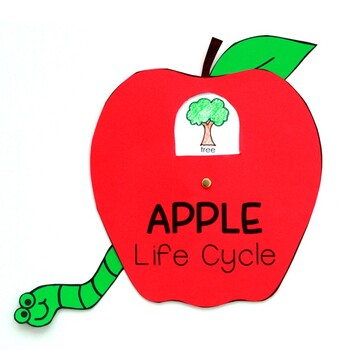 Apple Life Cycle Craft