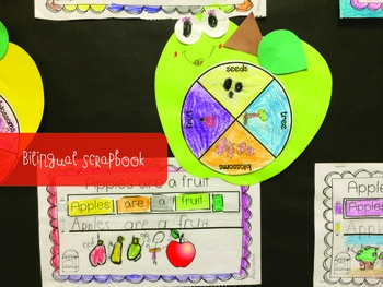 Apple Life Cycle {Craftivity and Printables in English and Spanish} FREEBIE