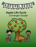 Apple Life Cycle Emergent Reader