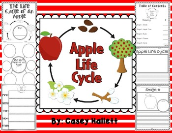 Apple Life Cycle {Informational Writing}