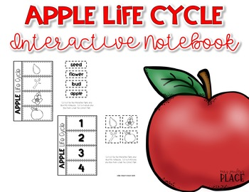 Apple Life Cycle Interactive Notebook