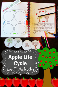 Apple Life Cycle Interactive Notebook, Apple Craftivity