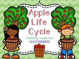 Apple Life Cycle Mini Unit