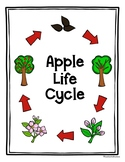Apple Life Cycle Poster Freebie