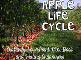Apple Life Cycle {Craftivity, PowerPoint, Mini Book, & Writing Organizers}