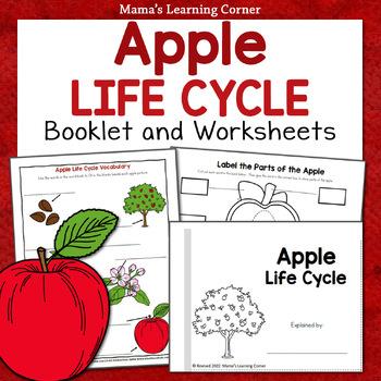 Apple Life Cycle Printable Packet