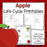 Apple Life Cycle Printable Activities
