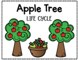 Apple Life Cycle [Sequencing Book]