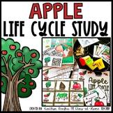 Apple Life Cycle Study