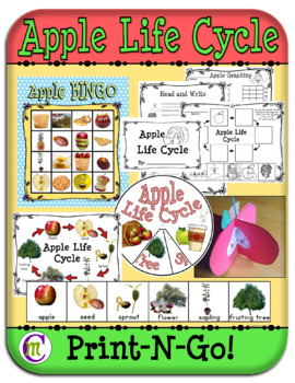 Apple Life Cycle Unit