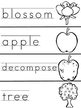 Apple Life Cycle Write the Room