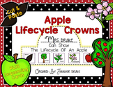 Apple Lifecycle Crown PLUS Sequencing Cards