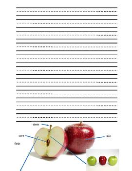 Apple Mini-Unit