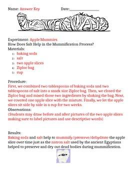 Apple Mummification Experiment