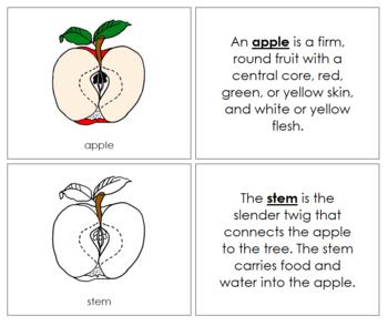 Apple Nomenclature Book