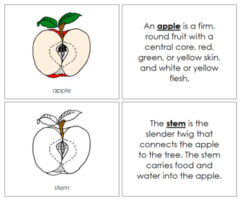 Apple Nomenclature Book