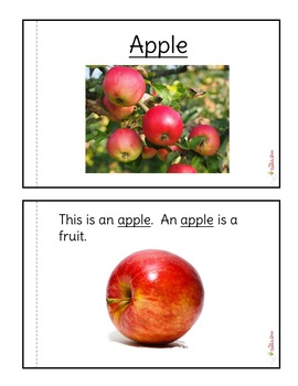 Apple Nonfiction Packet for Autism and Special Education
