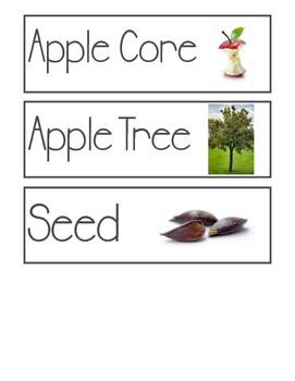 Apple Orchard Vocab Cards