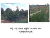 Apple Orchard and Pumpkin Patch Story