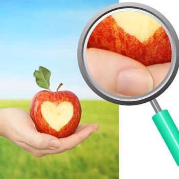 Apple Photos - Fresh Apples Photographs Clip Art Set for Commercial Use