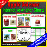 1st Grade Kindergarten Apple Science | Fall Science Activities Apple Life Cycle