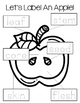 Apple Science, Math, and Literacy Investigations (Apples in a Snap!)