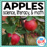 Apple Theme: Science Lesson Plans and Literacy & Math Centers