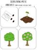 Apple Themed Language Activities: Spatial, Describing, Opp