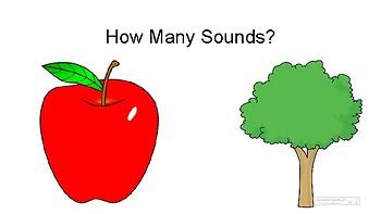 Apple Tree Beat Charts