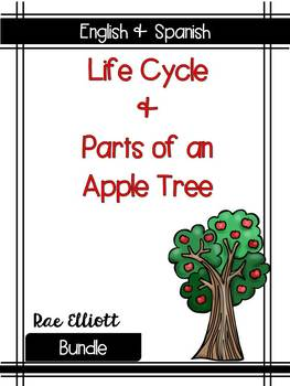 Apple Tree Label & Life Cycle- Bilingual