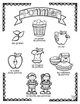 Apple Tree Life Cycle Craftivity ~ French ~ Le pommier