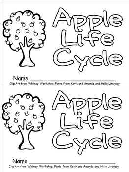20 Fresh Life Cycle Worksheet Kindergarten Pics - WDSCreative.us