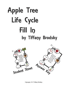 Apple Tree Life Cycle Fill In Science Vocabulary Check or Practice