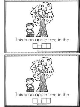 Apple Tree Life Cycle | Mini-Book
