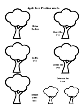Apple Tree Position Words