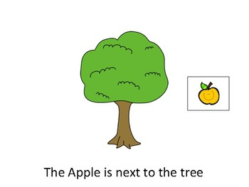 Apple Tree Spatial Concepts