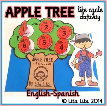 Apple Tree life cycle Fold & Learn