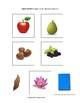 Apple Trouble Language Activities