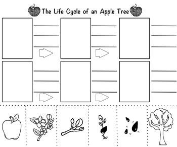 Apple Unit: Multiple Subjects 1st-2nd