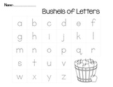 Apple Upper/Lowercase Matching Center- Bushels of Letters