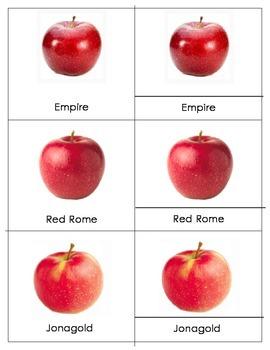 Apple Varieties - Montessori Three Part Cards