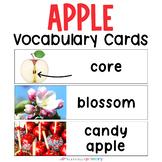Apple Vocabulary Word Wall   Print & D'Nealian
